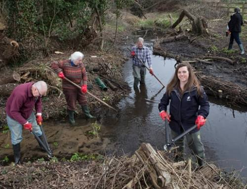 Drugs, plastics and flea killer: the unseen threats to UK's rivers