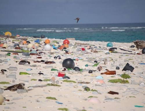 Kontribusi Lingkungan Terus Memburuk